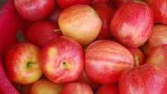 Как заморозить яблоки на зиму дольками