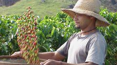 Хозяйство Колумбии: основные сведения