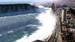 Некоторые факты о цунами