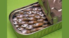 Как выбрать съедобные рыбные консервы