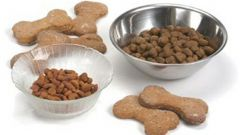 Сухой корм для собаки: правила выбора