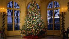Как украсить новогоднюю ель по фэншуй