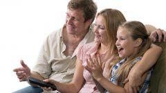 Какое кино смотреть всей семьей? Фильмы о животных - лучший вариант