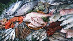 Выбираем свежую рыбу