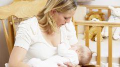 Как кормить ребенка в первые 5 месяцев жизни