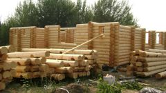 Выбор древесины для постройки жилого дома