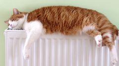 Как сделать батареи теплее - несколько простых советов