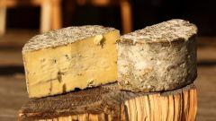 Домашнее сыроделие и рецепт ароматного стилтона – сыра с голубой плесенью. Часть II