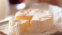 Домашнее сыроделие и приготовление вкусных сливочных камамбера и бри
