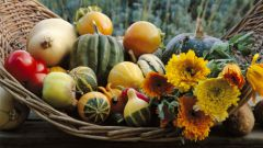 Секреты богатого урожая