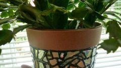 Как сделать мозаику для цветочного горшка