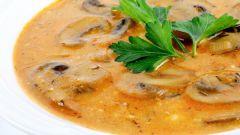 Как приготовить вкусный суп из шампиньонов