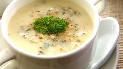 Как приготовить грибной суп-пюре со сливками