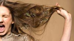 Почему после мытья головы лезут волосы