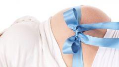 На каком месяце становится виден живот при беременности