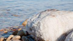 Какое море на планете самое соленое