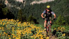 Какой лучше выбрать горный велосипед  в 2017 году