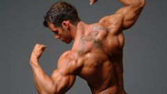 How to build muscle chest, shoulders, press in the home
