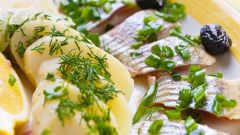 Recipes for salting herring