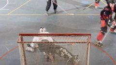 В какой стране появился хоккей