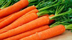Легко и просто: морковная маска