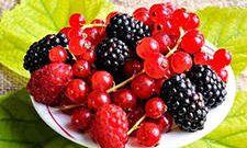 Собираем ягоды правильно