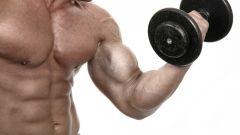 Какие витамины отвечают за рост мышц