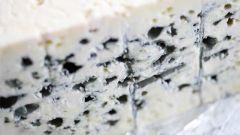 Полезные свойства сыра с плесенью