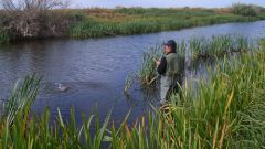 Where to go fishing in the Rostov region
