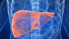 Чем отличаются гепатит A, B, C и как передаются