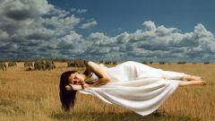 Почему нам снятся сны