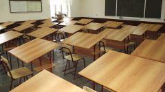 Когда появились первые школы в России