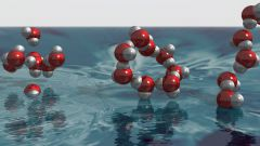 Что такое органические вещества