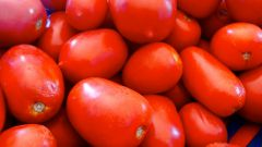 Рецепты закуски из помидоров
