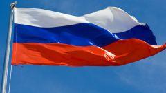 Сколько стран граничат с Россией