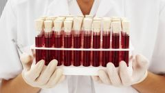 Сколько существует групп крови