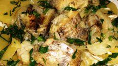 Как приготовить салат из судака