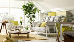 Как правильно расставить растения в квартире