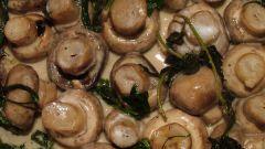 Рецепт салата с консервированными шампиньонами