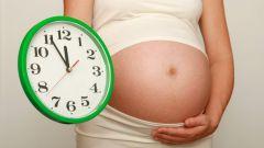 Сколько времени длятся первые роды
