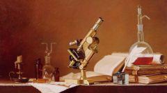 Почему физику считают одной из основных наук