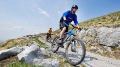 Какие группы мышц развивает велосипед