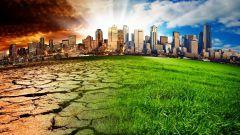 Что изучает прикладная экология