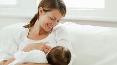 Сколько раз ест новорожденный ребенок