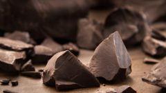 Чем полезен шоколад