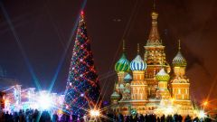 Как выбирают елку для Красной площади