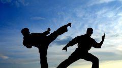 Какие существуют пояса в карате