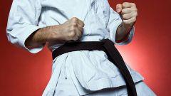 Как выбрать между карате или дзюдо