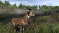 Какие бывают симуляторы охоты