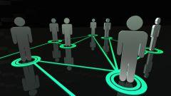 Как классифицируют социальные организации